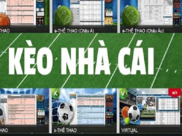 5 website cá cược bóng đá uy tín nhất Việt Nam